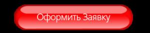 "заявка на лизинг - ООО ""Релиз"""