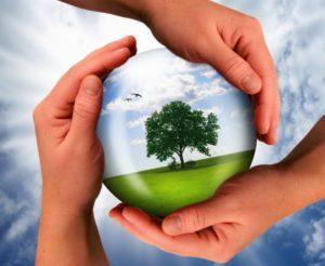 Экологические инициативы ООО